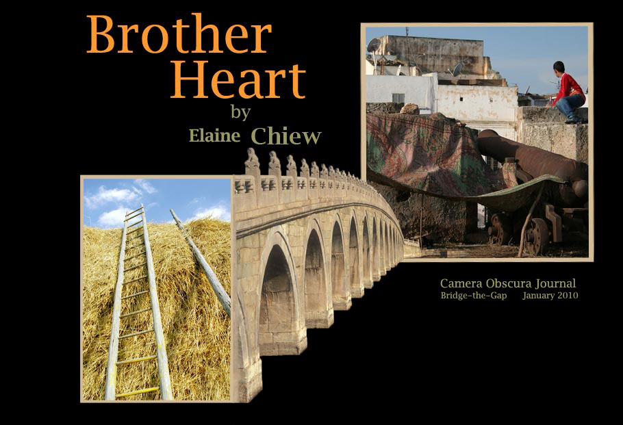 Brother Heart by Elaine Chiew