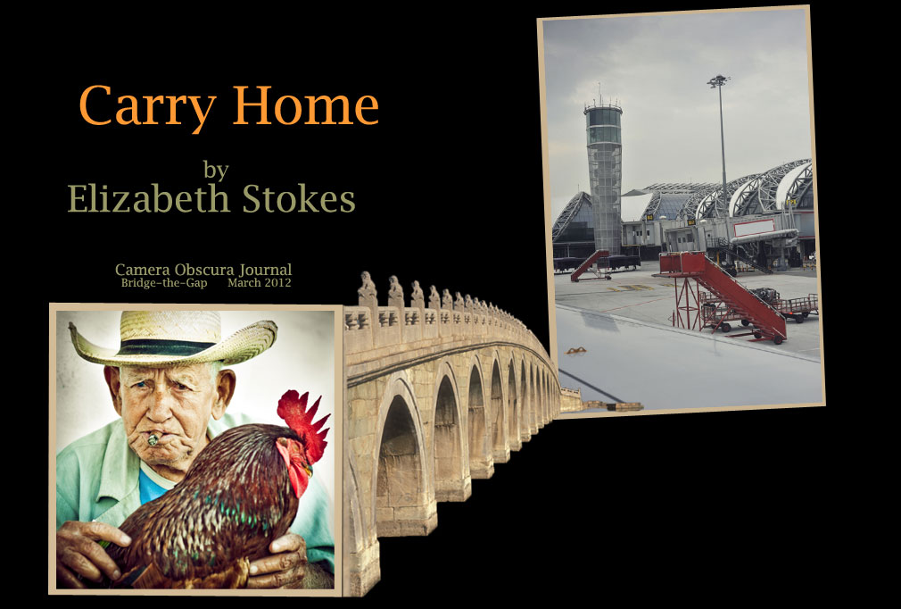 Carry Home by Elizabeth Stokes